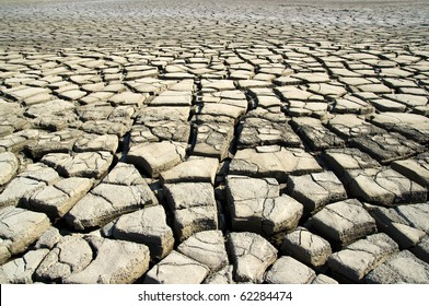 The dry earth