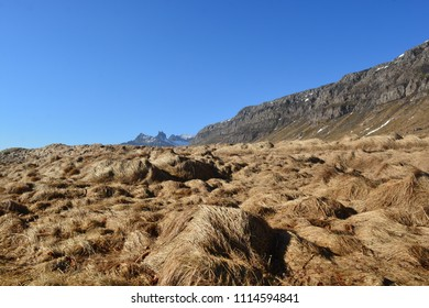 A dry field in Iceland