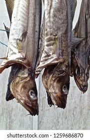 dry fish for dinner