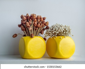 Dry flowers in modern yellow geometric concrete planters on white shelf isolated on white background. Beautiful painted concrete pots.