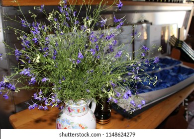 Dry flowers in vase. - Shutterstock ID 1148624279