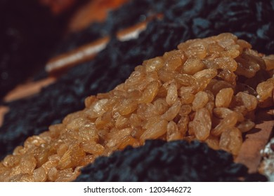 Dry fruits close up on market. Almond, Fennel, Apricot, Arrowroot, Cantaloupe. Background texture.