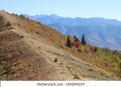 Dry grass dominates the slopes of the Wasatch Mountains in September as fall colors start to show up on the slopes and canyons