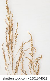 Dry grass golden colored on light background for wedding cards, valentines day or screensaver. Minimal nature concept. Vertical format image.