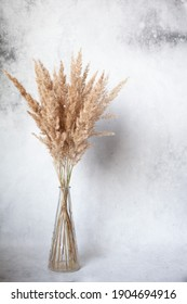 Dry grass in a stylish glass vase on a grey concrete background. Minimalism design. Space for text. Selective focus.