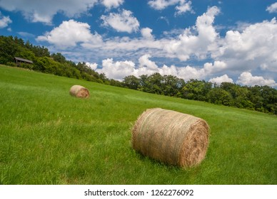 Dry haystacks after harvest on green summer forest field with big clouds and blue sky