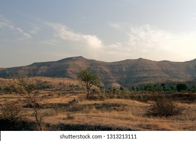 Dry hills and fields in the area of the Deccan plateau, Semi-deciduous forests, scrub in winter. India