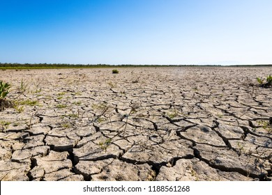 Dry land during hot summer days in Evros Delta, Greece