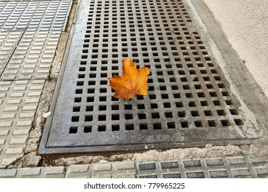 dry leaf trapped in a ventilation grille on the ground