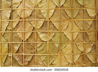 Dry leaves background.