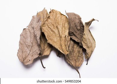 Dry leaves, Heap of dry leaves. isolated on white background.