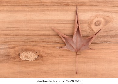 Dry maple leaves placed on wooden floor.