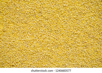 Dry millet groats in top view, abstract background for your design