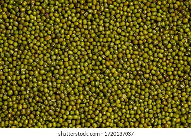 Dry organic Moong Whole Dal or  Mung bean or green gram or maash top view background or texture. Healthy spices, nuts, seeds and herbal products.