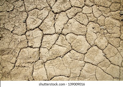 Dry Parched Textured Death Valley Ground