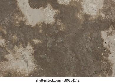 Dry phage texture
