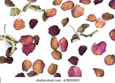 Dry pink and red rose petals scattered on white background.