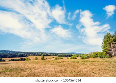 Dry plains on a hillside in the summer under a blue sky in Harz, Germany