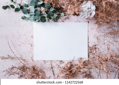 Dry plant leaves painted in metallic pink, eucalyptus branches, black molly carnation and a piece of blank white paper, top view, flat lay