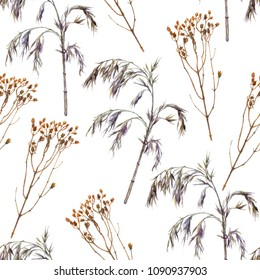Dry plants seamless pattern. Watercolor winter dry decorative grass on white background
