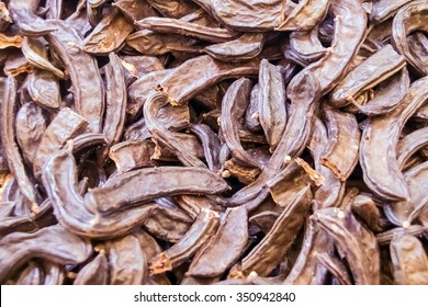 Dry pods of Ceratonia siliqua, commonly known as the carob tree, St John's-bread, or locust bean