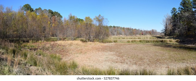 Dry pond in fall in Mississippi