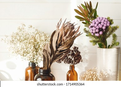 Dry protea flower, brunia, gypsophila and dried herbs in different brown glass bottles on wooden shelf in country home. Modern house decor. Stylish simple interior design elements. Rural house
