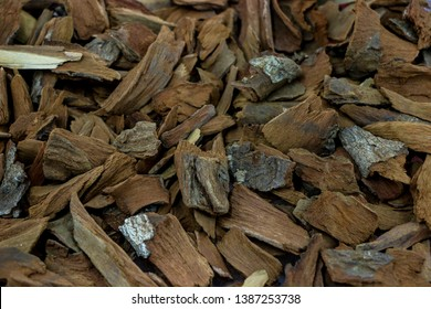 Dry Quinine herb for medicine