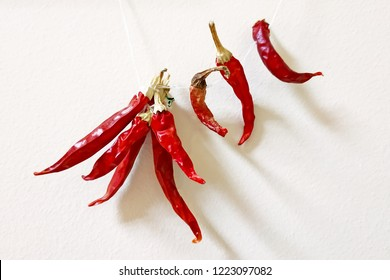 dry red bitter peppers hanging on a white thread