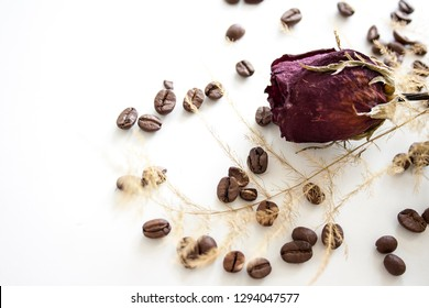 Dry red rose with coffee beans isolated