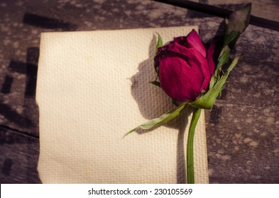 Dry red rose and old mulberry paper on grunge background. Vintage effect.