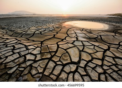 Dry rice paddies and puddles.