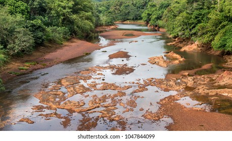 Dry riverbed in the forest