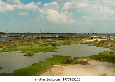 Dry riverbed of river cauvery(kaveri) in south India. Includes a railway bridge in view and cattles consuming the hay grown on the river beds.