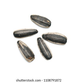 Dry roasted sunflower seeds isolated on white background.
