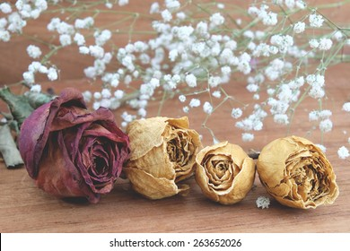 dry roses with baby's breath (gypsophilia paniculata) and  wood background