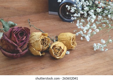 dry roses with baby's breath (gypsophilia paniculata) and old vintage film camera on  wood background