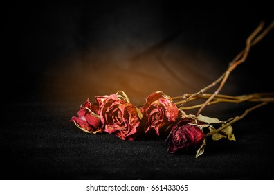Dry roses on black fabric background. The roses are cracked like a broken heart .