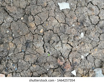 Dry soil Lack of water, lack of moisture, causing the soil to dry and break into sheets