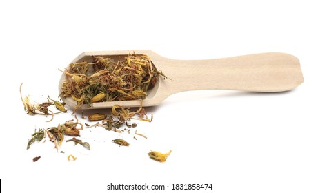 Dry St. John's wort pile in wooden spoon (Hypericum perforatum) isolated on white background