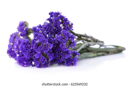 Statice flower images stock photos vectors shutterstock dry statice flower on white background mightylinksfo