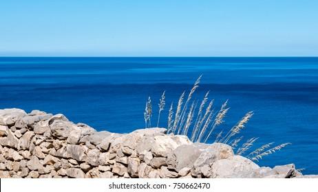 Dry stone wall with wild spikes, against a deep blue sea. Riserva dello Zingaro, San Vito lo Capo, Sicily.