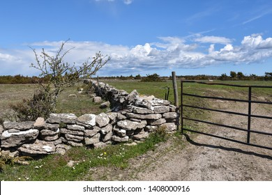 Dry stone walls and a gate at a great plain grassland called Stora Alvaret on the swedish island Oland