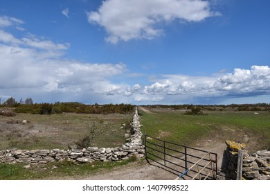 Dry stone walls and gates at the great plain grassland Stora Alvaret at the swedish island Oland