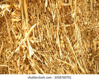 Dry straw, hay, texture and background, close up