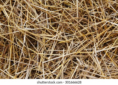 Dry straw macro texture background