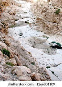 Dry stream bed (wadi nahal) running through the Judean desert near Arad and Masada (Israel Palestine). Some very small stagnant pools are visible but mostly dry (summer).