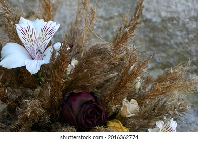 Dry thistle flowers with grass, closeup. Wild decorative plants from nature. Arranged on dark wood. Front view. Diffused light coming from the window. . High quality photo