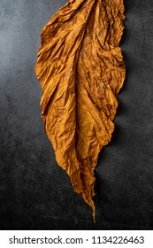 Dry tobacco leaves on black background
