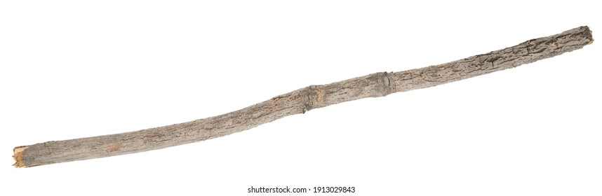 Dry tree twigs branches isolated on white background. pieces of broken wood plank on white background. close-up